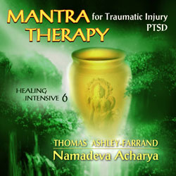 Mantra Therapy for Traumatic Injury - PTSD (Download)